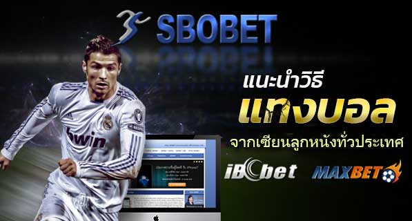 sbobet_sport